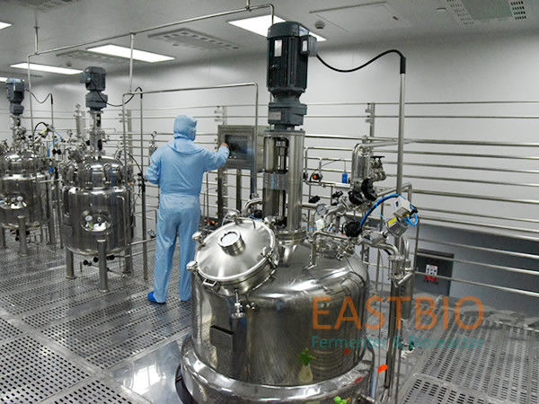Lab To Production Scale Stainless Steel Bioreactor Biopharmaceutical Fermenter System