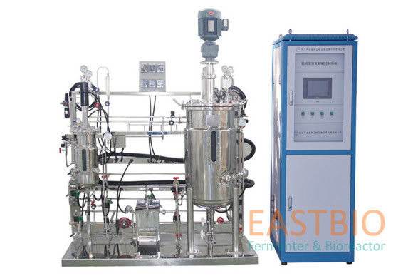 Multistep Stainless Steel Bioreactor Mechenical Stirred Adjustable Speed