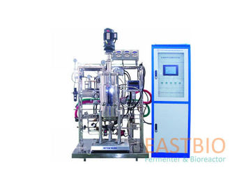 Mechanical Stirred Stainless Steel Fermenter , Lab Scale Bioreactor 300L 500L